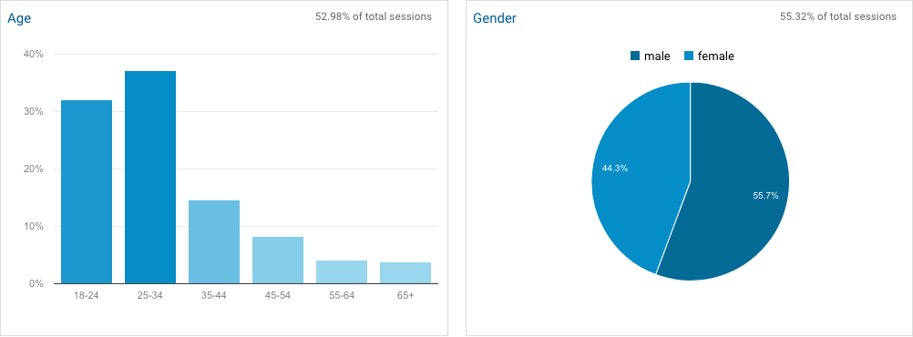 Screenshot of Google Analytics demographic information
