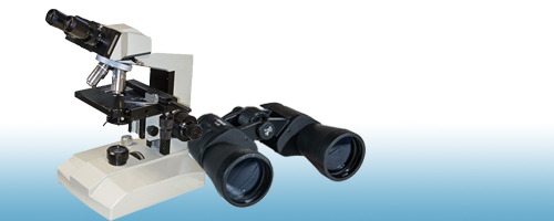microscope and binoculars for high and low level website insights