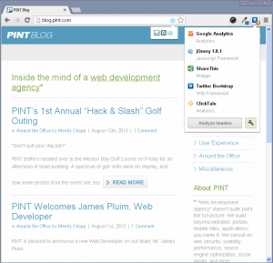 WordPress not detected on PINT, Inc. blog