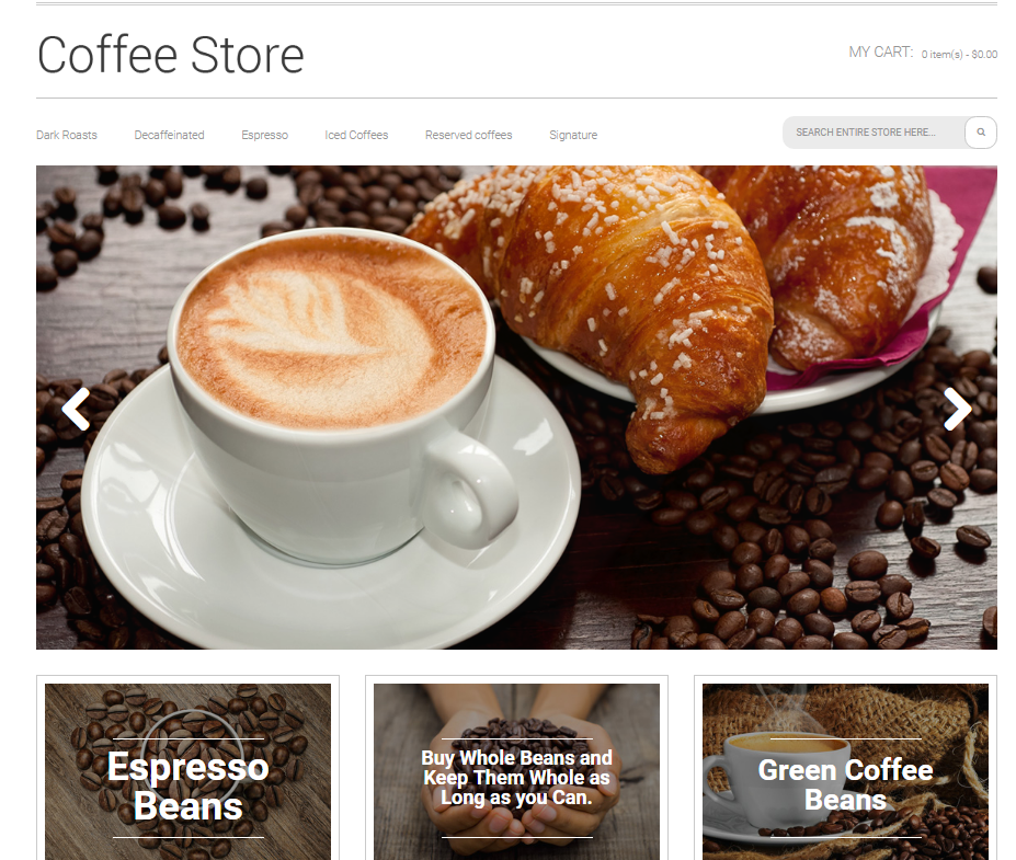 template for magento website development